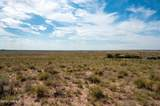 40 Acres Tract 427 Painted Desert Ranch - Photo 62