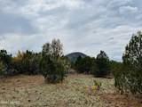 10524 Falcon Ridge Road - Photo 12