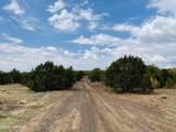 10524 Falcon Ridge Road - Photo 19