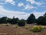 10524 Falcon Ridge Road - Photo 20