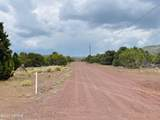 10524 Falcon Ridge Road - Photo 21