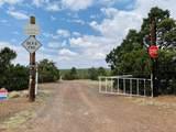 10524 Falcon Ridge Road - Photo 22