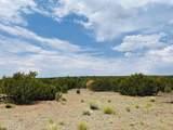 10524 Falcon Ridge Road - Photo 4