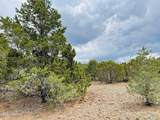 10524 Falcon Ridge Road - Photo 6