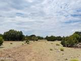 10524 Falcon Ridge Road - Photo 7