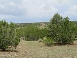 12507 Mesa View Road - Photo 12