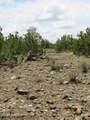 12507 Mesa View Road - Photo 14