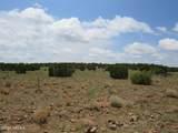 12507 Mesa View Road - Photo 17