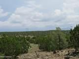 12507 Mesa View Road - Photo 18