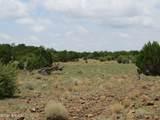 12507 Mesa View Road - Photo 2