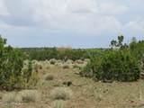 12507 Mesa View Road - Photo 4