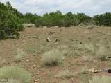 12507 Mesa View Road - Photo 8