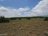 12663 Mesa View Road - Photo 11