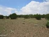 12663 Mesa View Road - Photo 13