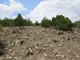 12663 Mesa View Road - Photo 15