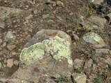 12663 Mesa View Road - Photo 16