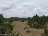 12663 Mesa View Road - Photo 17