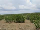 12663 Mesa View Road - Photo 5