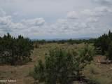 12663 Mesa View Road - Photo 9