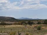 14477 Howard Mesa Loop - Photo 2