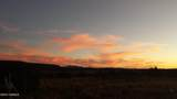 14477 Howard Mesa Loop - Photo 20