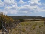 14477 Howard Mesa Loop - Photo 3