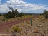 14477 Howard Mesa Loop - Photo 6