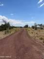 14477 Howard Mesa Loop - Photo 7