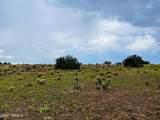 7505 Big Bear Road - Photo 3
