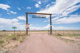 5514 Cattle Tank Road - Photo 14