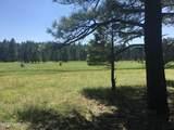 22958 Fox Ranch Road - Photo 1