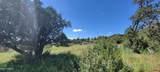 1808 Sagebrush Road - Photo 11