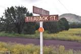 1036 Tamarack Street - Photo 13