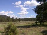 7143 Elk Tank Road - Photo 10