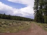 7143 Elk Tank Road - Photo 14
