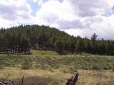 7143 Elk Tank Road - Photo 4