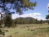 7143 Elk Tank Road - Photo 7