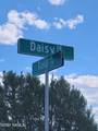 7923 Daisy Drive - Photo 8