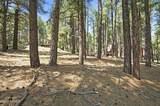 2953 Wakas Trail - Photo 4