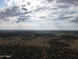 7980 Hawkeye Circle - Photo 27