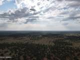 7980 Hawkeye Circle - Photo 3
