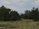 7980 Hawkeye Circle - Photo 47