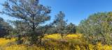 000 Grantham Ranch South Road - Photo 6