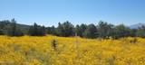 000 Grantham Ranch North Road - Photo 2