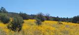 000 Grantham Ranch North Road - Photo 22
