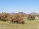 000 Alpine Ranchos # 30317010H - Photo 13