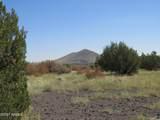 000 Alpine Ranchos # 30317010H - Photo 29