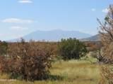 000 Alpine Ranchos # 30317010H - Photo 3