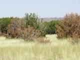 000 Alpine Ranchos # 30317010H - Photo 30