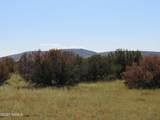000 Alpine Ranchos # 30317010H - Photo 32